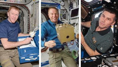186 days in space returned to Earth by staying in kazakhstan three astronaut, safe landing